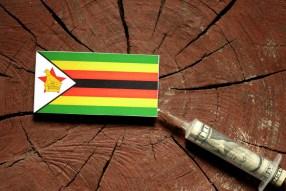 Zimbabwe Cash Crisis