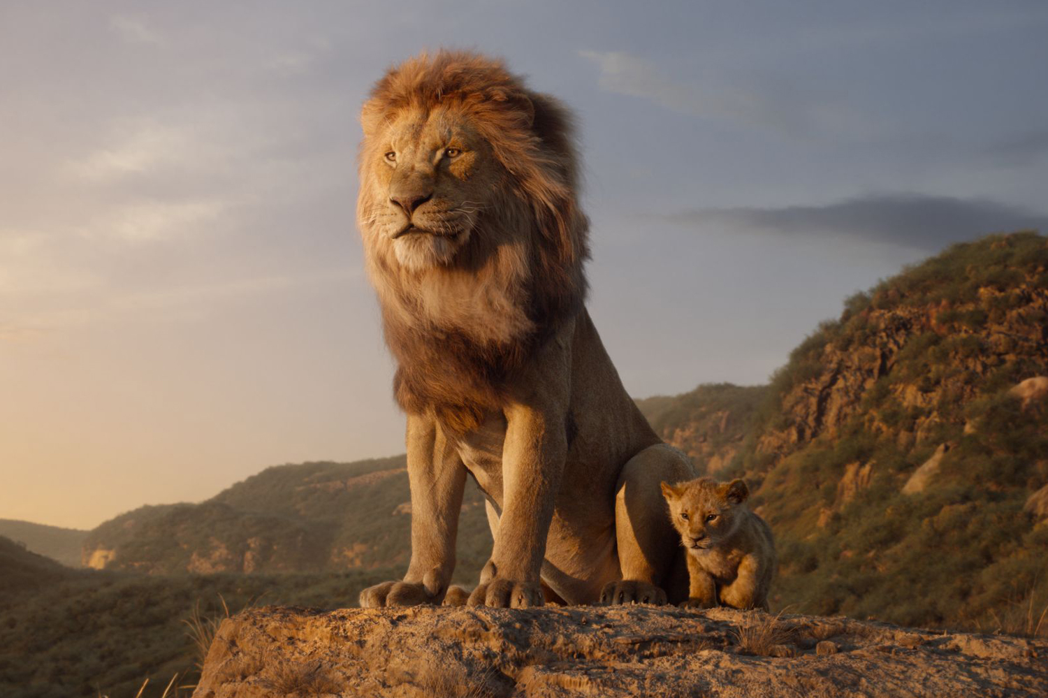 The Lion King Disney Live Action Remake Review