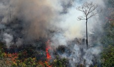 Brazilian Farmers Believe They Have the Right to Burn the Amazon