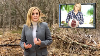 Watch Samantha Bee Discuss Coronavirus' Unfair Impact on Women