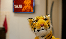 Sales of Tiger Merch Soaring as Brands Pounce on Success of 'Tiger King'