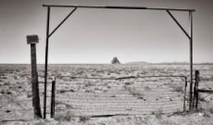 The Navajo Nation and Coronavirus: Planting Hope Amid a Plague