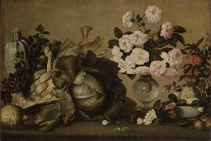 La storia del collezionismo botanico alla Galleria Corsini