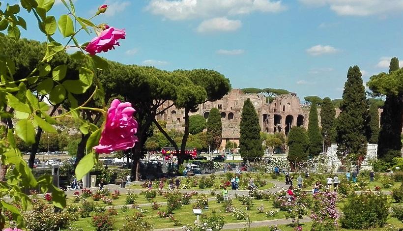 Roma, Campidoglio: apre il Roseto Comunale