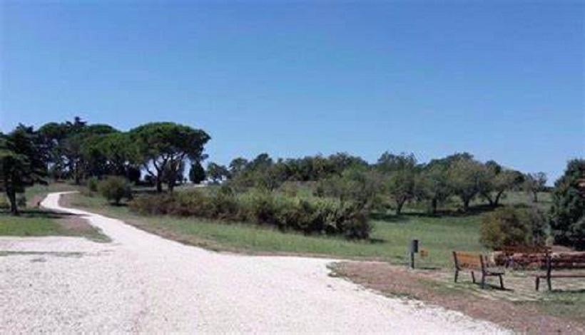 Verde, approvato protocollo d'intesa con Associazione Nazionale Carabinieri