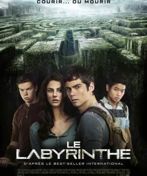 Affiche film Le Labyrinthe