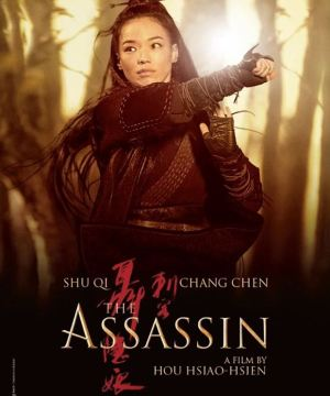 Affiche film The Assassin