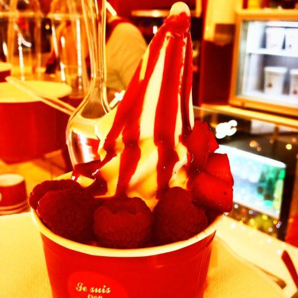 Yogurt Factory, Yaourt glacé et fruité