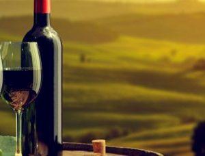 Les vins d'Europe