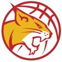 scanzo-basket