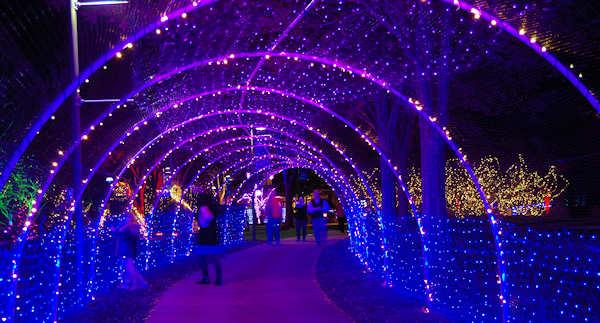North Carolina Christmas Lights