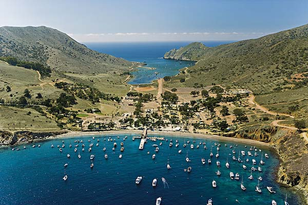 Catalina Island , California
