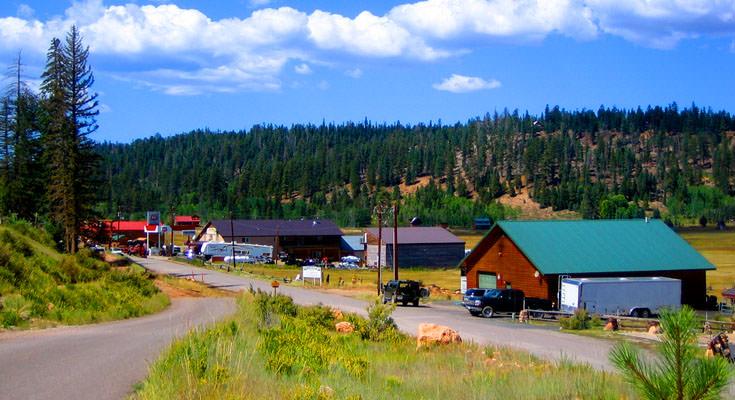 Duck Creek Village