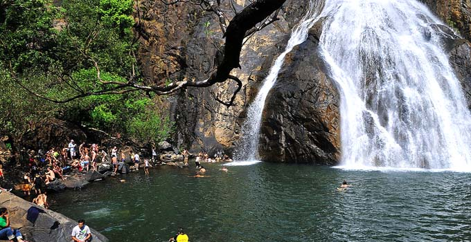 Dudhsagar Waterfalls in Goa