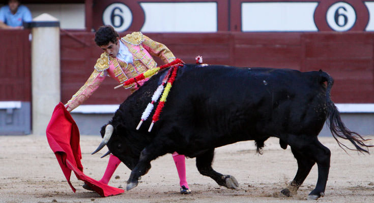 Bull Fighting, Madrid