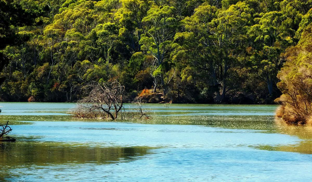 Tasmania-Lake