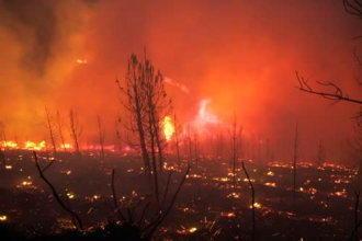 Roman arestat pentru incediul de padure care a ucis un pompier in Galitia