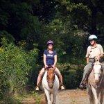 new river trail park horse riding, new river park virginia