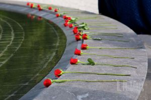 arlington national cemetery, roses arlington cemetery