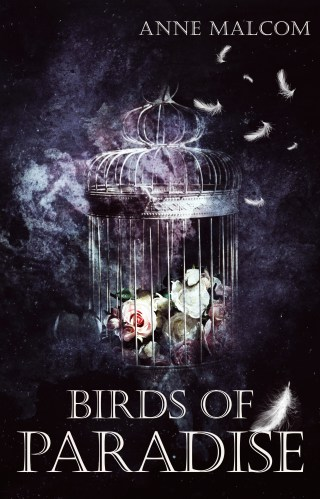 Release | Birds of Paradise by Anne Malcolm