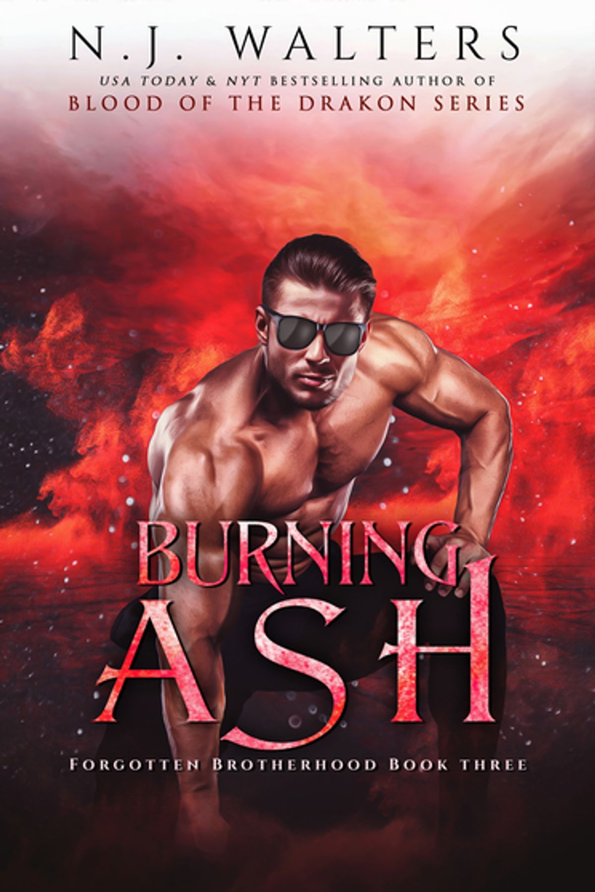 Burning Ash by N.J. Walters