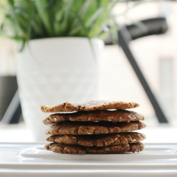 Vegan Keto Crackers Recipe