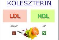 Photo of A koleszterin nem egy mumus