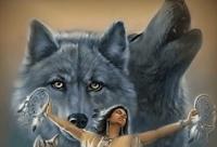 Photo of A kutya a farkasok ajándéka az emberiségnek