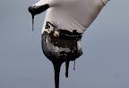 Photo of A kőolaj ,amit felkenünk magunkra