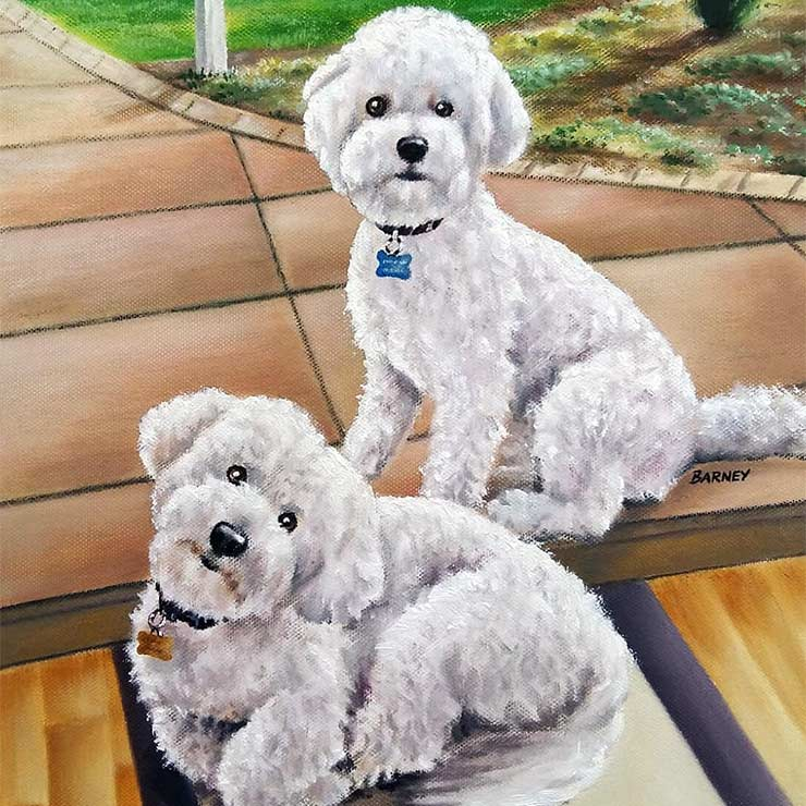 Barney & Bailey - Pet Portrait