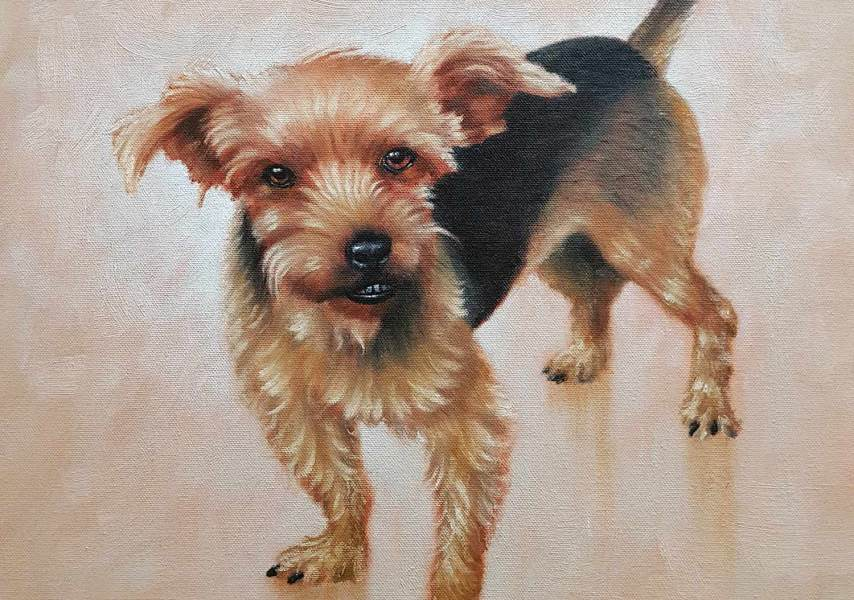 Pippin - Pet Portrait Painting