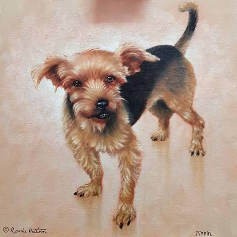 Pippin - Pet Portrait