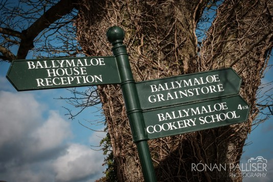 ballymaloe_wedding_025