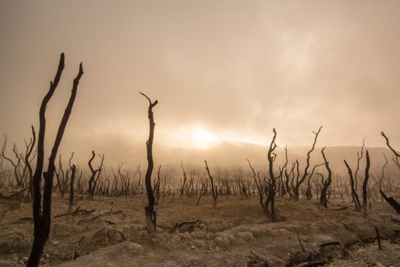 The desolation of a barren life. A burned over area shows no signs of life.