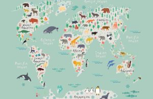 safari kids wallpaper mural
