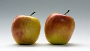 How to Stop Bullying with Empathy: The Story of Two Apples