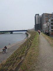多摩川土手を歩く