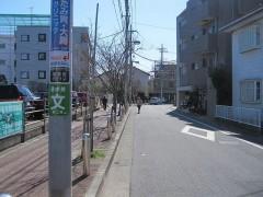電柱に注目。世田谷区喜多見と狛江市が同居