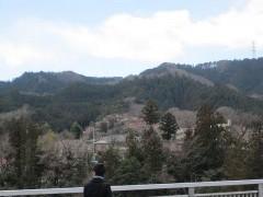 神代橋から見た吉野梅郷