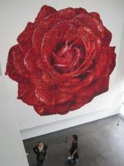 巨大なバラは…