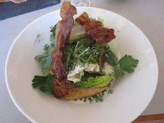 Hen salad bacon pickles parsley and chives.