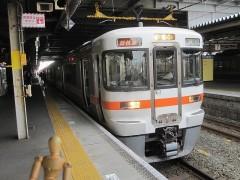 東海道本線 新快速大垣行き 5317F (JR東海313系)