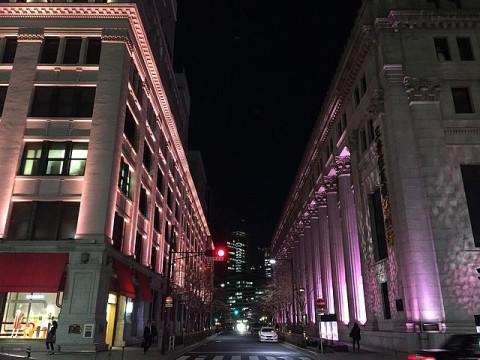 桜色のライトアップ