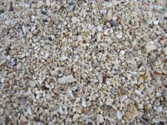 砂浜は砂とサンゴのかけらで綺麗