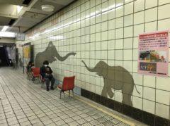 天王寺動物園の最寄り駅らしい感じ