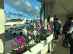 さらば、沖縄