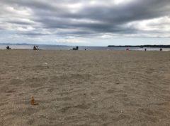 久しぶりの砂浜?