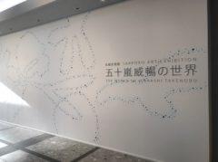 札幌美術展 五十嵐威暢の世界 展