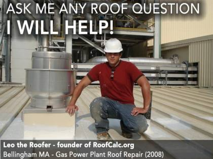 Leo the Roofer - RoofCalc.org