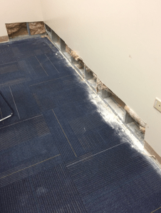 PHOTO 2: Moisture intrusion at the base of this wall was the result of water circumventing the through-wall flashing and roof base flashing termination seen in Photo 1. A big concern with conditions, such as this, is the propensity of the materials to promote mold growth.